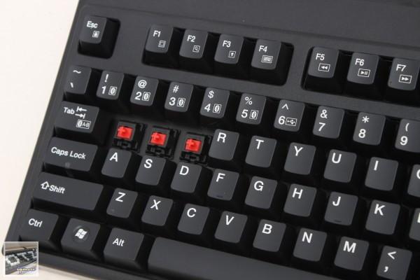 ZIPPY BW7050 雙模機械式鍵盤 Sample 工程樣品評測,支援藍牙1對5連線